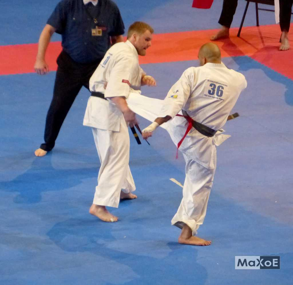 international kyokushin open 3