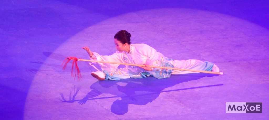 kung-fu taichi 3