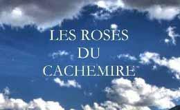 Les roses de Cachemire