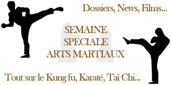 Semaine Spéciale Arts Martiaux sur MaXoE !