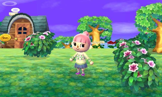 Animal-Crossing-New-Leaf1