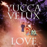 YuccaVelux-jaq