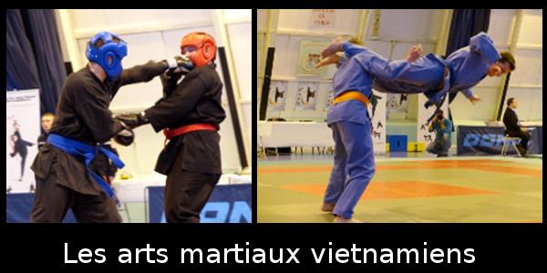 arts martiaux vietnamiens