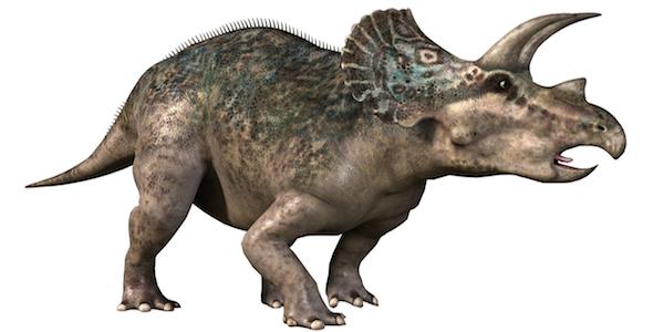 wonderbook-dinosaures-haut