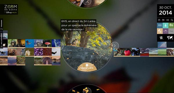 Zoom On Earth, l'expérience digitale de Disneynature