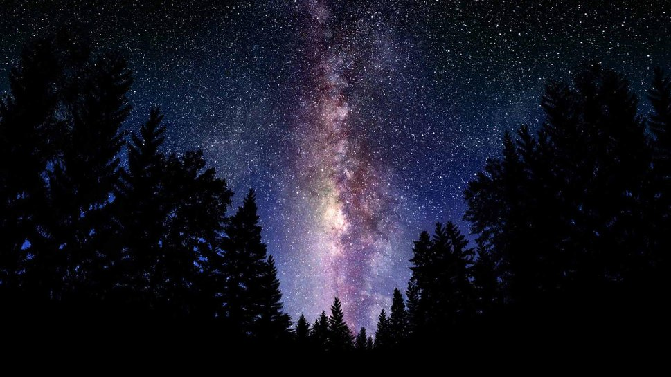690928__milky-way-forest-tree-sky-galaxy_p