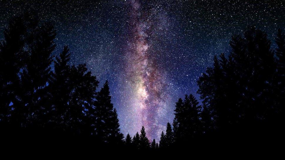 690928__milky-way-forest-tree-sky-galaxy_p