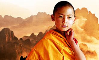Le spectacle 'Le Petit Dragon' avec les Etoiles du Cirque de Pékin et les Moines Shaolin