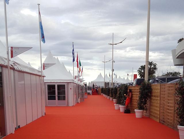 Instantané de Cannes : Le Festival des professionnels de la profession