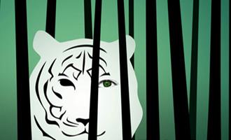 Porcelaine, Légende du tigre et de la tisseuse d'Estelle Faye chez les Moutons électriques